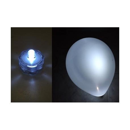 Luz Led blanca XL